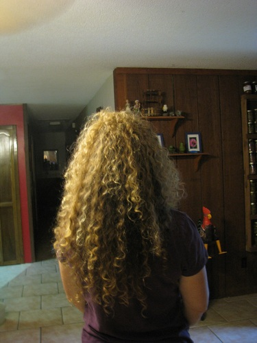BACK OF HEAD - Blonde, 3b, 3a, Long hair styles, Readers, Female, Curly hair, Adult hair, Natural Hair Celebration Hairstyle Picture