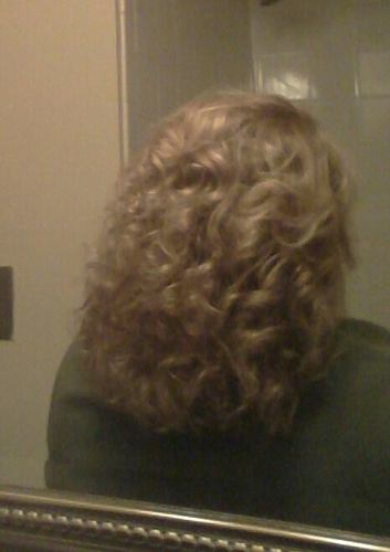 Curly back - Blonde, 3a, Readers, Female, Adult hair Hairstyle Picture