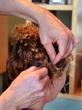 Pinning Braids Back