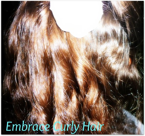 Embrace Curly Hair  - 3a, Twist hairstyles, Readers, Female Hairstyle Picture