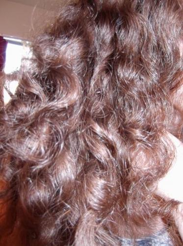 untamed curls - Readers Hairstyle Picture