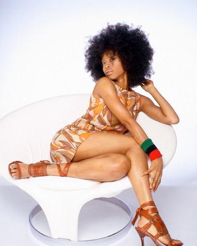 erykah badu, singer - Brunette, 4b, Celebrities, Medium hair styles, Kinky hair, Afro, Female Hairstyle Picture